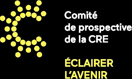 Comité de prospective de la CRE